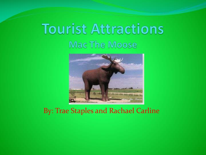 tourist attractions mac the moose n.