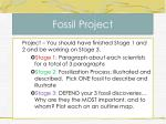 fossil project