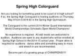 spring high colorguard