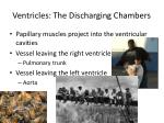 ventricles the discharging chambers
