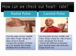 how can we check our heart rate
