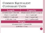 common equivalent customary units