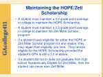 maintaining the hope zell scholarship