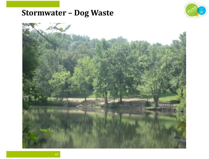 Stormwater – Dog Waste