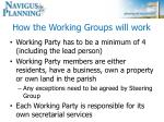how the working groups will work