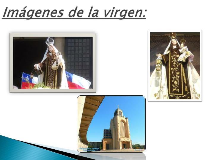 Imágenes de la virgen: