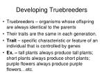 developing truebreeders