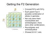 getting the f2 generation