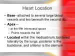 heart location