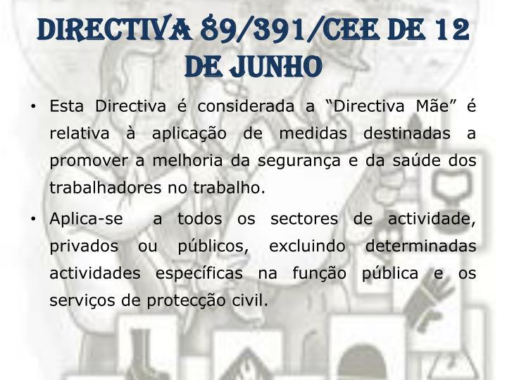 Directiva 89 391 cee de 12 de junho1