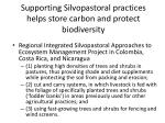 supporting silvopastoral practices helps store carbon and protect biodiversity