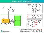carbon fluxes in vegetation3