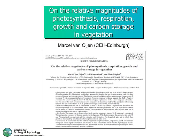 on the relative magnitudes of photosynthesis respiration growth and carbon storage in vegetation n.