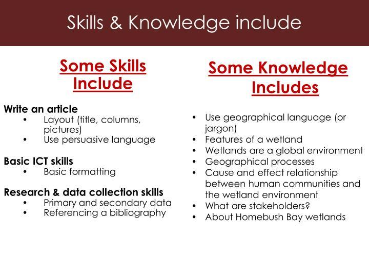 Skills & Knowledge include