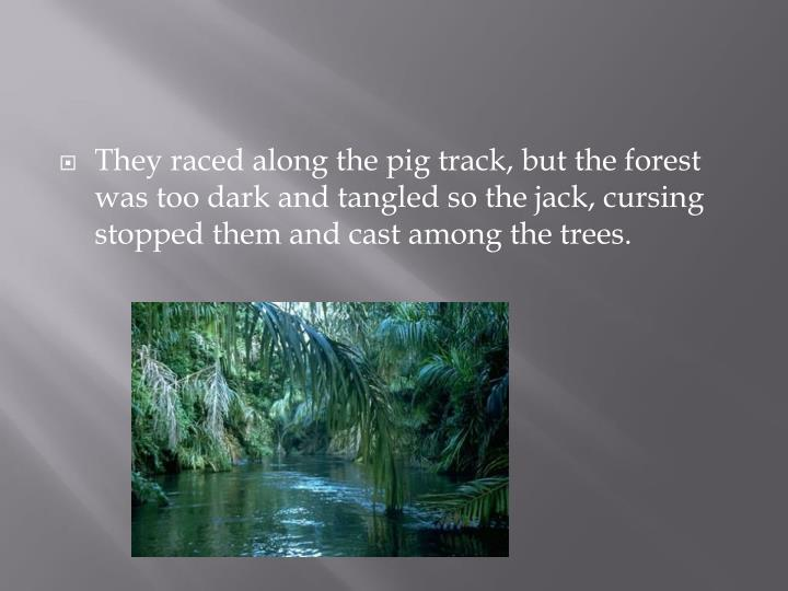 They raced along the pig track, but the forest was too dark and tangled so the jack, cursing stopped them and cast among the trees.