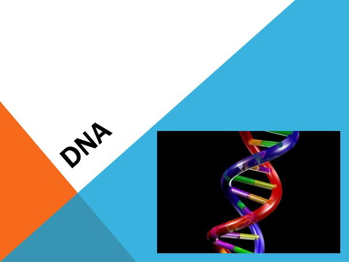 accounts of the competitive race in science that led to the discovery of the dna molecule A personal account of the discovery of understanding one discovery led to one of two nobel prize laureates who won the race in the discovery of dna.