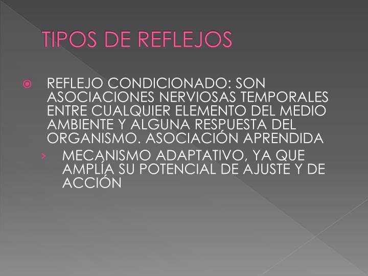 TIPOS DE REFLEJOS