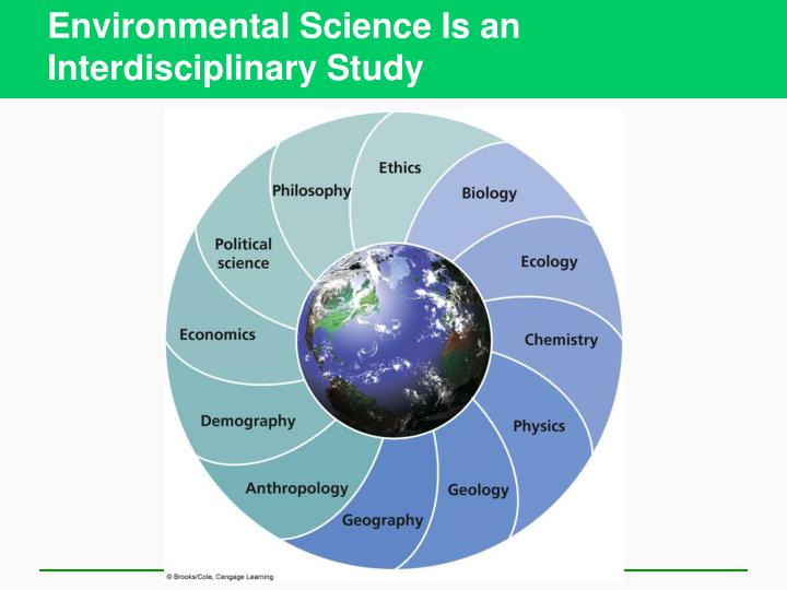 the affects of environmental problems on the economic development Trade and the environment global development and environment institute tufts university medford, ma 02155  have environmental effects but will these effects increase or decrease with expanded  international environmental issues, such as forest protection, ozone depletion, hazardous.