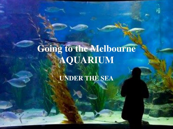 going to the melbourne aquarium n.