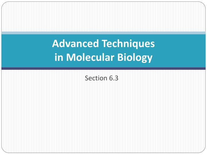 PPT - Advanced Techniques in Molecular Biology PowerPoint
