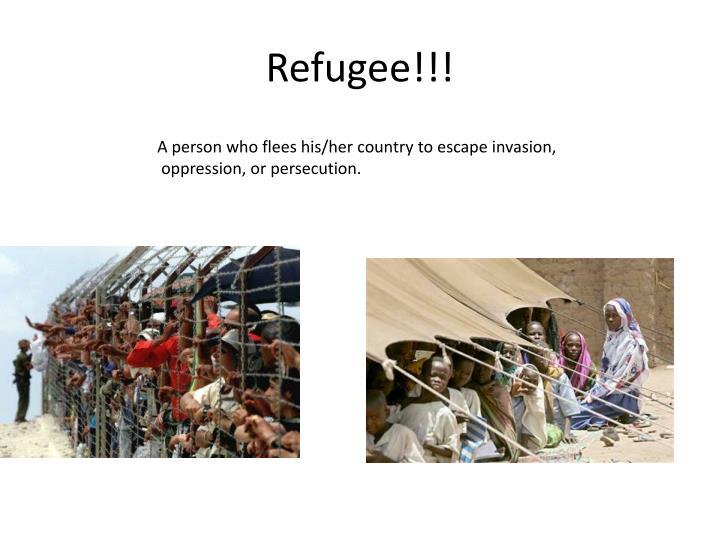 Refugee!!!