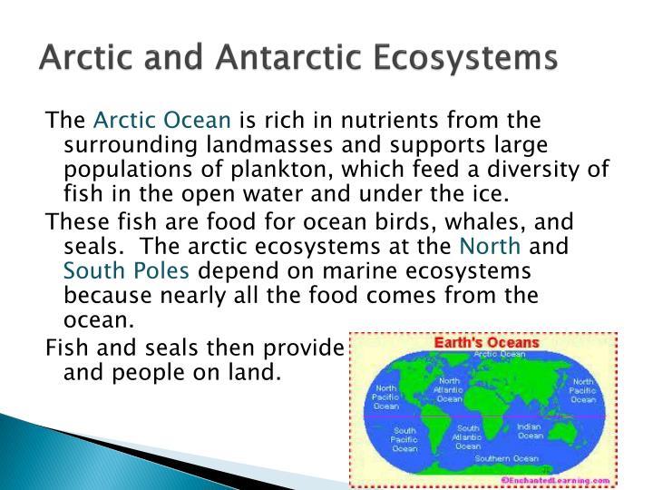 Arctic and Antarctic Ecosystems