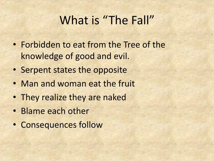 What is the fall