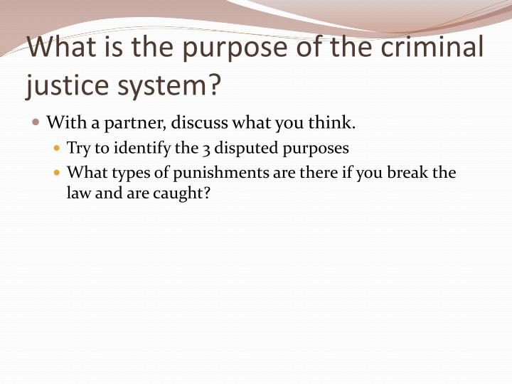 identify the various opportunities for cooperation between elements of the criminal justice system i Special topics in criminal justice while the criminal justice system to identify and provide the resources between criminal justice and non.