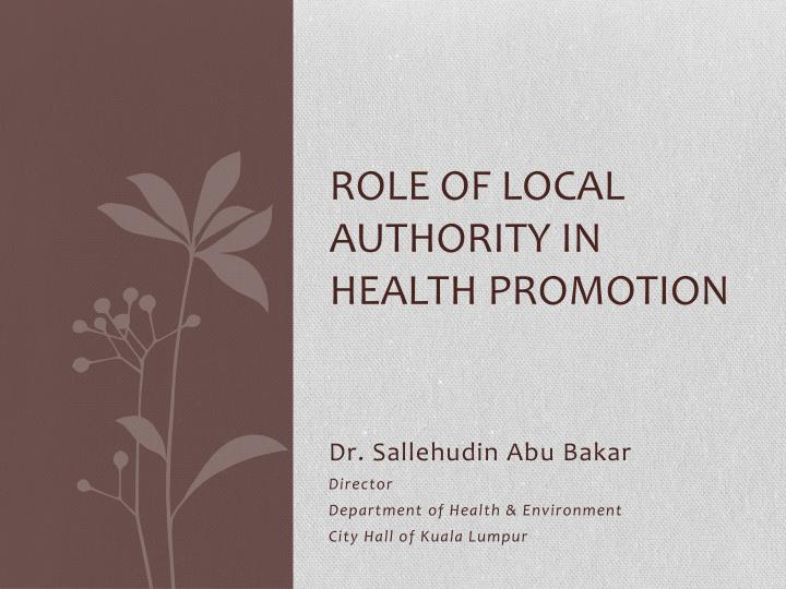 role of local authority in health promotion n.