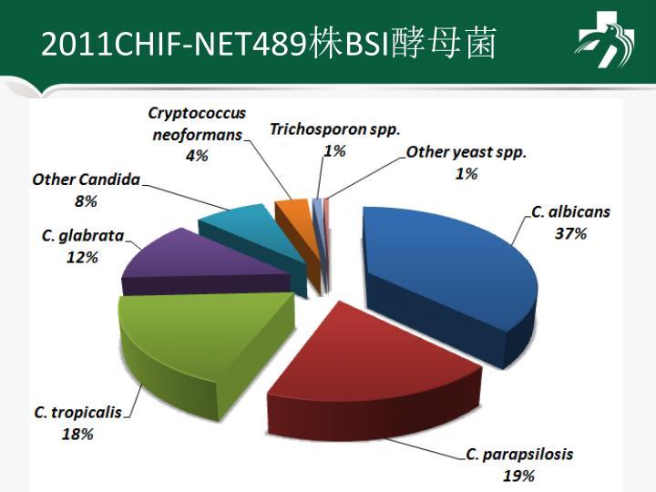 2011CHIF-NET489