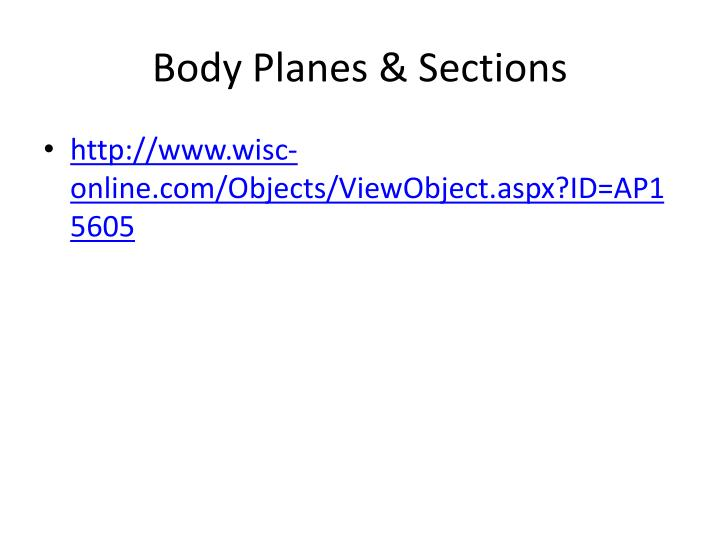 PPT - Anatomical Terminology PowerPoint Presentation - ID:2866928