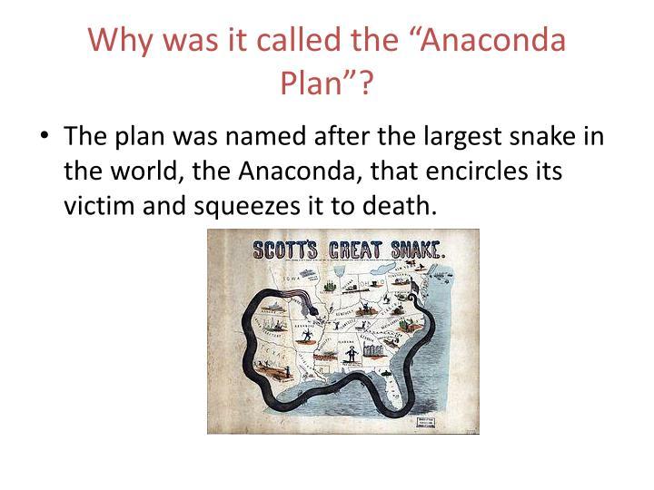 the anaconda plan was