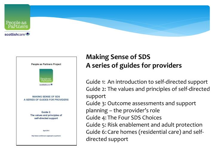 Making Sense of SDS
