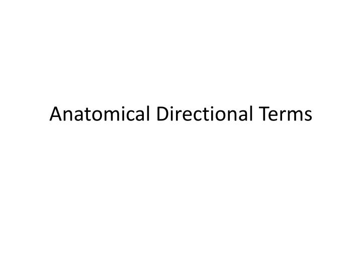 anatomical directional terms n.