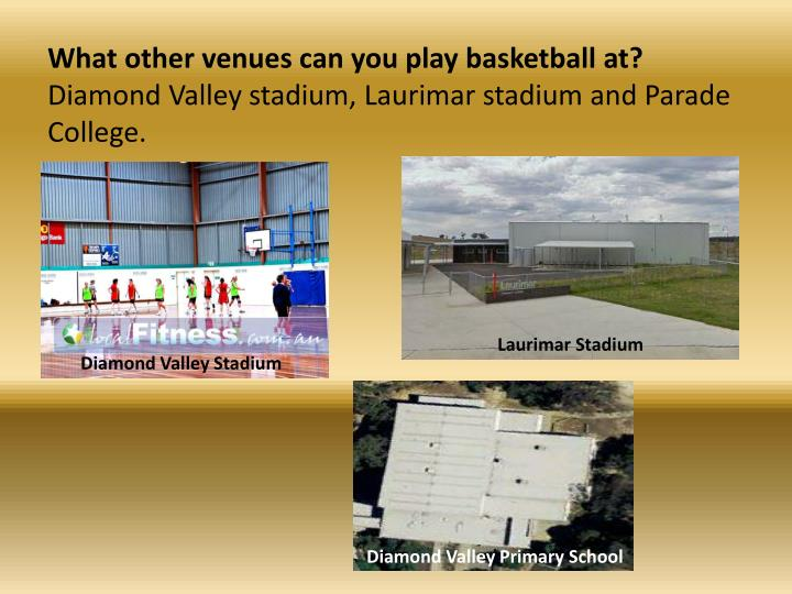 What other venues can you play basketball at?
