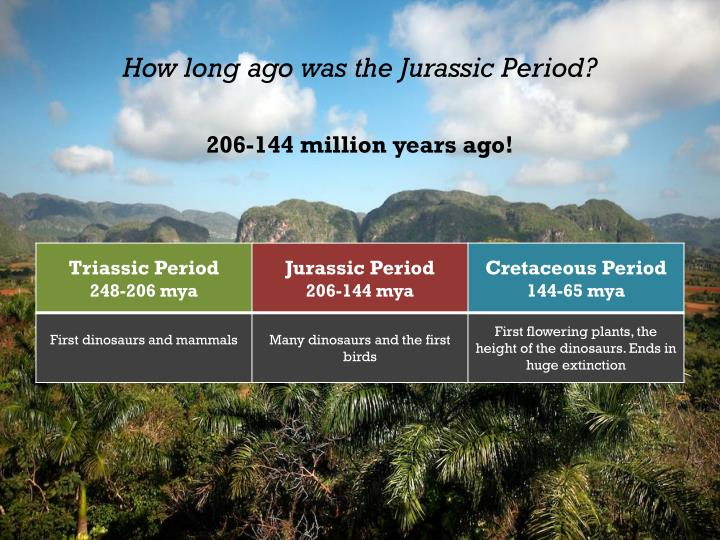 How long ago was the jurassic period