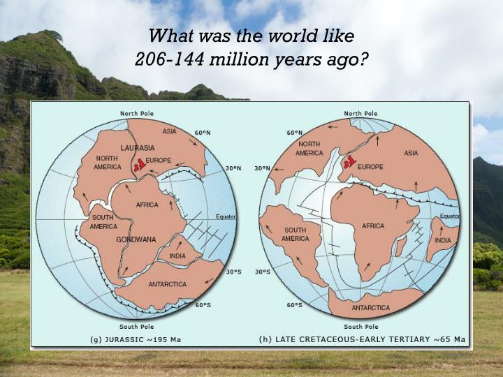 What was the world like 206 144 million years ago