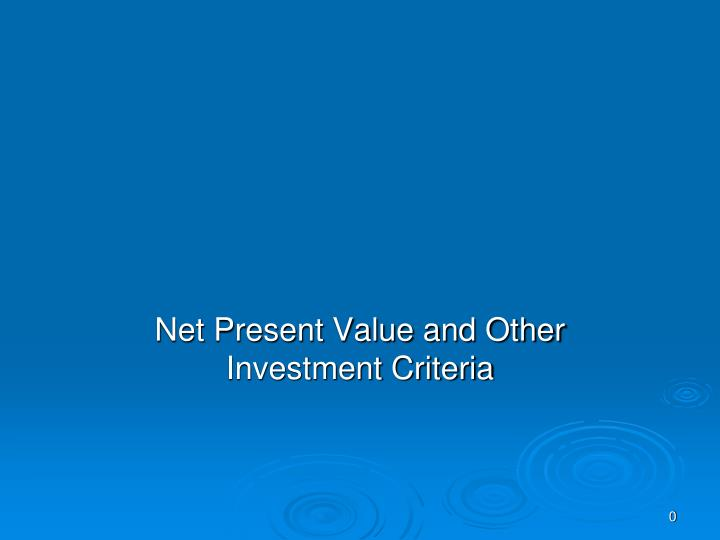 net present value and other investment criteria n.