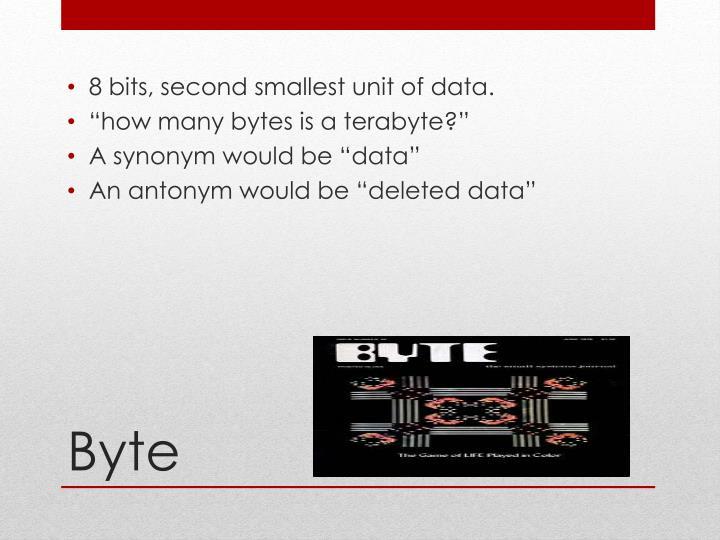 8 bits, second smallest unit of data.