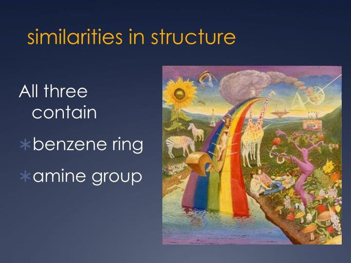 similarities in structure