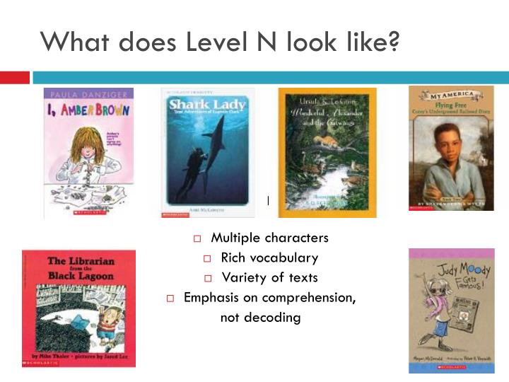 What does Level N look like?