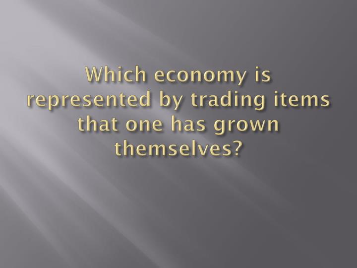 Which economy is represented by trading items that one has grown themselves?