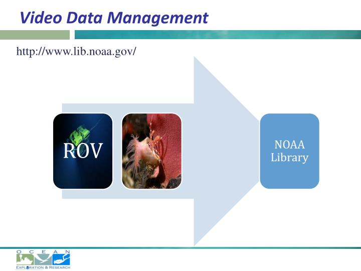 Video Data Management