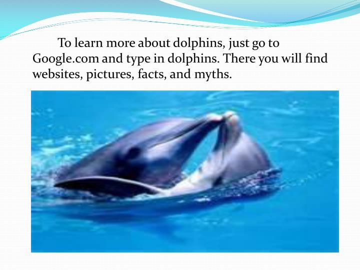 To learn more about dolphins, just go to Google.com and type in dolphins. There you will find websites, pictures, facts, and myths.