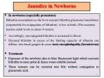jaundice in newborns
