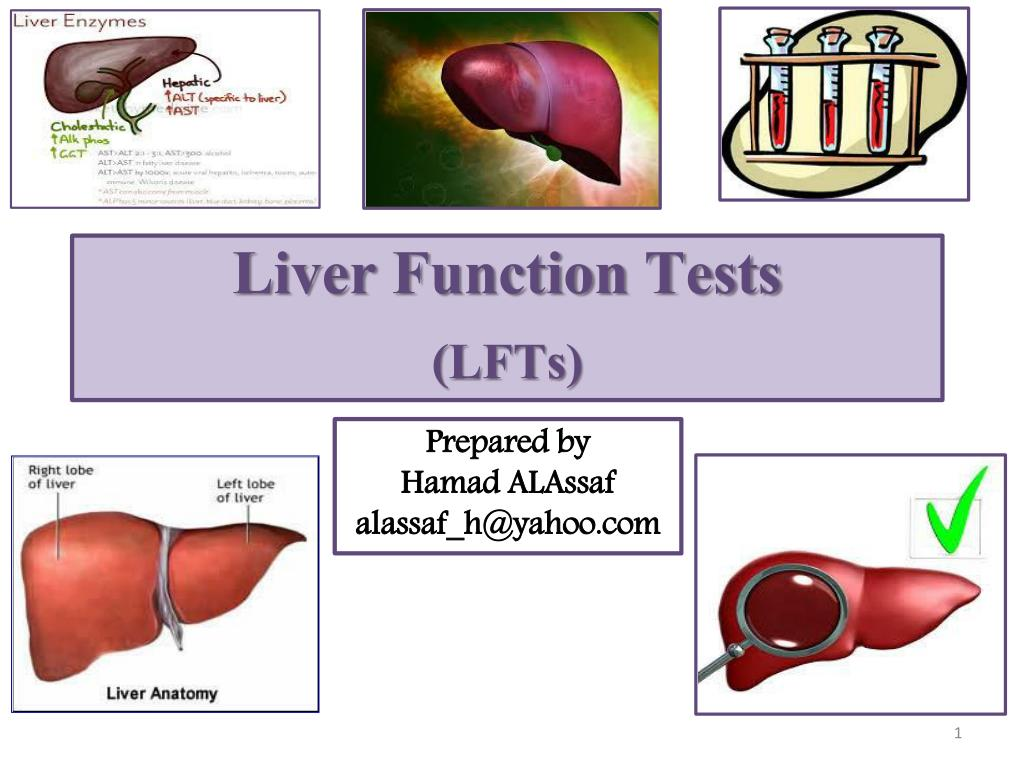 Ppt Liver Function Tests Lfts Powerpoint Presentation Id2874310