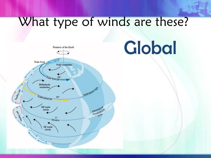 What type of winds are these?