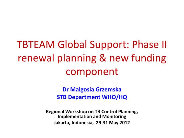 tbteam global support phase ii renewal planning new funding component n.