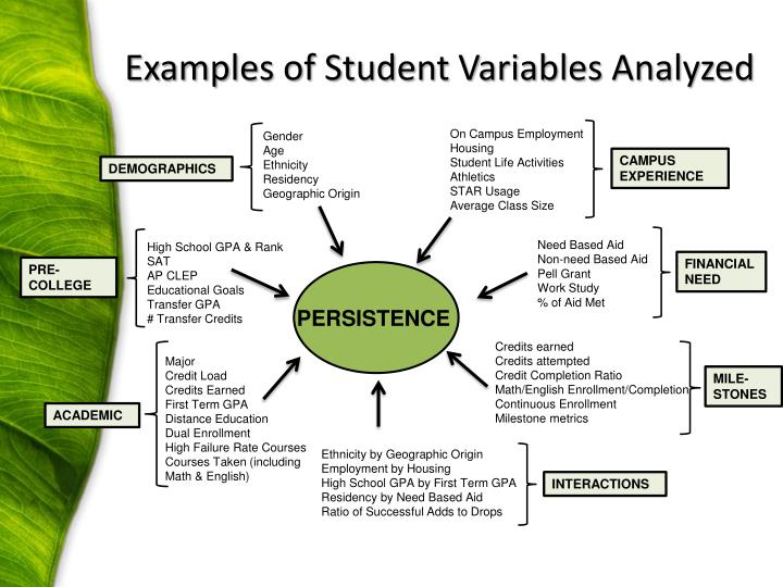 Examples of Student Variables Analyzed