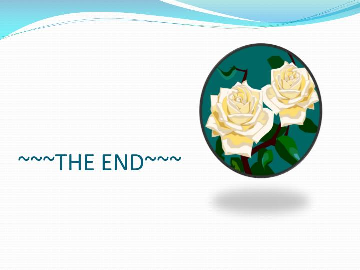 ~~~THE END~~~